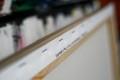 SAAL-FOTOOBRAZ-RAM-06_DSC6223-sRGB-sFB